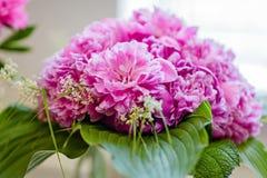 Sehr schöne rosa Pfingstrosen gemacht in einem Blumenstrauß Lizenzfreies Stockbild