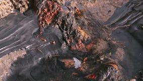 Sehr schmutziger Strom stock footage