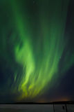 Grüne Wellen Stockbild