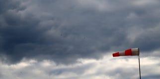 Sehr starker Wind Lizenzfreies Stockbild