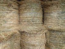 Sei Hay Bales immagazzinati con corda blu Fotografia Stock