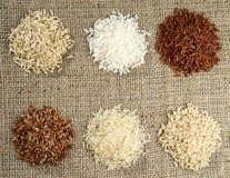 Sei mucchi di riso delle varietà differenti fotografia stock libera da diritti