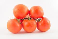 Sei non sbucciato, pomodori freschi e rossi con le code verdi sulla parte posteriore di bianco Immagini Stock Libere da Diritti