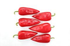 Sei peperoni dolci rossi luminosi su un fondo bianco Fotografia Stock