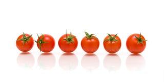 Sei pomodori con la riflessione su priorità bassa bianca Fotografie Stock Libere da Diritti