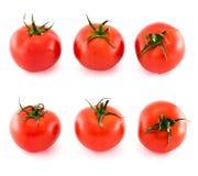 Sei pomodori freschi coperti di gocce di acqua isolate Immagini Stock Libere da Diritti
