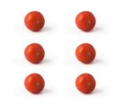 Sei pomodori isolati su fondo bianco Fotografia Stock