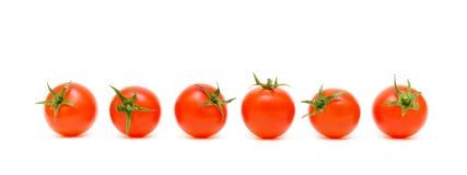 Sei pomodori maturi su una priorità bassa bianca Fotografia Stock Libera da Diritti