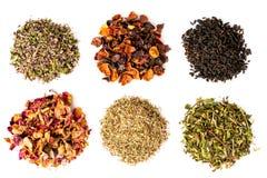 Sei tipi di tè su un fondo bianco, isolati Immagini Stock