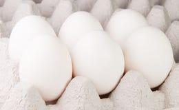 Sei uova bianche sul vassoio Fotografia Stock