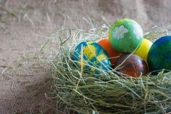 Sei uova colorate Fotografie Stock