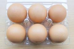 Sei uova fresche nella scatola Fotografia Stock