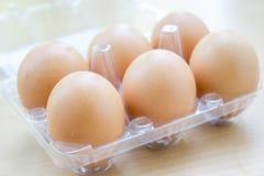 Sei uova fresche nella scatola Immagini Stock