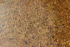 Seichtes Wasser-Steine Stockbild