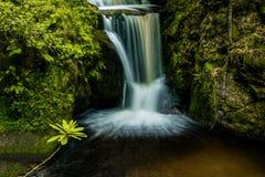 Seidiger Wasserfall Stockfotografie
