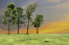 Seien Sie unterschiedlicher Baum Lizenzfreies Stockfoto