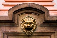 Seien Sie wie ein Löwe stockbild