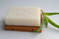 Seife mit Aloe Stockfoto