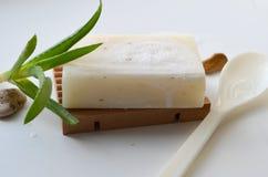 Seife mit Aloe Stockfotos