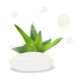 Seife mit dem Zusatz der Aloe Stockfotos