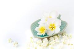 Seifen-, Tuch- und Blumenschneeglöckchen lizenzfreie stockfotos