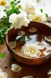 Seifen-, Tuch- und Blumenschneeglöckchen Lizenzfreies Stockfoto