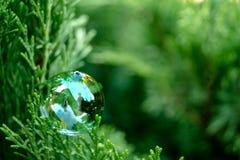 Seifenblase auf dem grünen Gras Stockfotografie