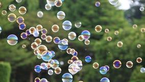 Seifenblasen 4k, die in die Luft mit natürlichem grünem unscharfem bokeh Hintergrund schwimmen stock footage