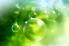 Seifenluftblasen auf grünem Hintergrund Stockfotos
