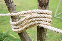 Seil befestigt zum Pfosten Stockfoto