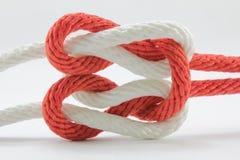 Seil, Knoten lizenzfreie stockbilder