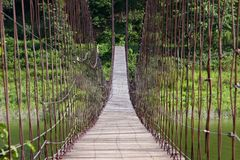 Seilbrücke am Nationalpark in Thailand. Lizenzfreies Stockfoto
