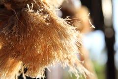 Seilfasern in den Sonnenstrahlen lizenzfreie stockfotografie