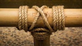 Seilknoten auf einem Bambus Lizenzfreie Stockfotos