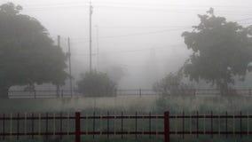 Sein Nebel lizenzfreie stockfotografie