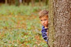 Sein wenig furchtsam Fell des kleinen Jungen hinter Baum Kleiner Junge im furchtsamen Wald wenige furchtsame Spiele des Kinderspi lizenzfreie stockfotografie