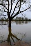 The Seine flooding in the Paris region stock image