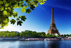 Seine in Paris with Eiffel tower. In sunrise time Royalty Free Stock Photography