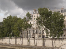 Seine Paris. Paris, Trees Along the River Seine Royalty Free Stock Photo