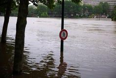 Seine River flod i Paris på Juni 02, 2016 Fotografering för Bildbyråer