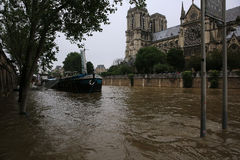 Free Seine River Flood In Paris On June 02, 2016 Royalty Free Stock Photography - 72455707