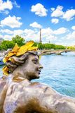 Seine river and Paris city view Royalty Free Stock Photo