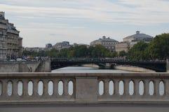 Seinen i Paris - Frankrike - Europa Royaltyfri Foto