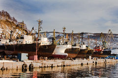 Seiners wintering in stocks. ( Kamchatka Royalty Free Stock Photos