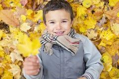 Seis años del niño de la estación del otoño en un parque Fotografía de archivo