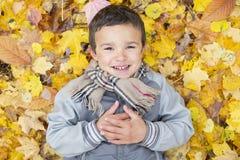 Seis años del niño de la estación del otoño en un parque Foto de archivo libre de regalías