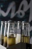 Seis blocos de garrafas de cerveja do ofício com fundo interessante imagens de stock royalty free