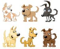 Seis cães engraçados Fotos de Stock Royalty Free