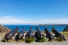Seis cañones que hacen frente al océano foto de archivo libre de regalías