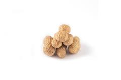 Seis cacahuetes Fotos de archivo
